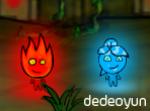 Ateş ve Su 1 Orman Tapınağı Oyna