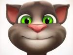 Kedi Oyna