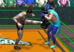 Wrestling Legends - Güreş Efsaneleri 3D Oyna
